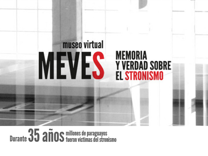 MEVES Main Page Banner.jpg